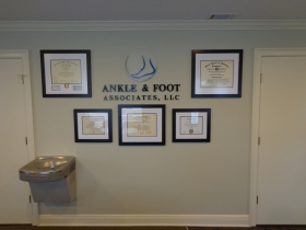 Ankle and Foot Interior (1)